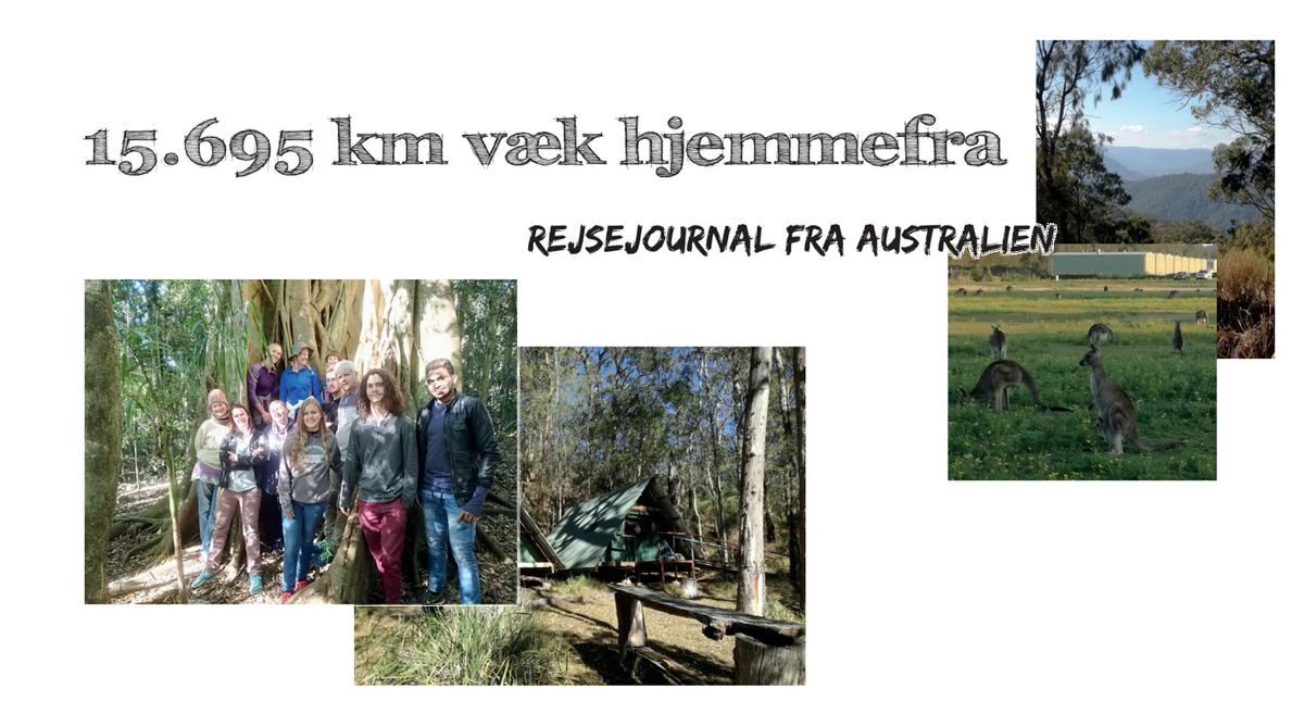 15.695 km væk hjemmefra // Rejsejournal fra Australien