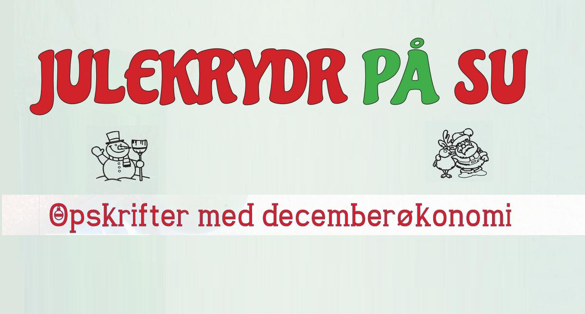 Julekrydr på SU // Opskrifter med decemberøkonomi